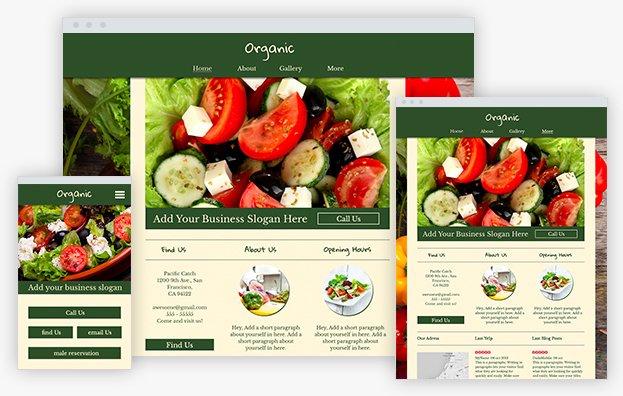 Reddrop Media Organic Template